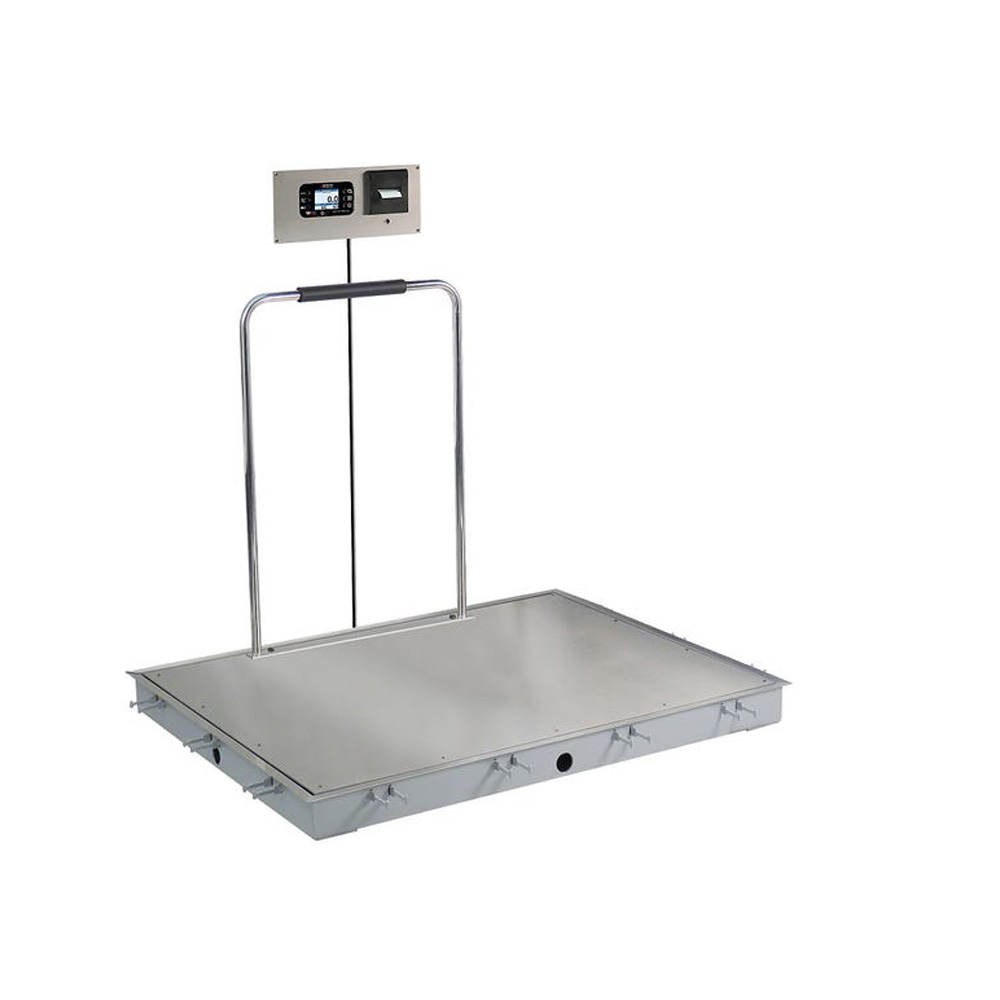 In-Floor Dialysis Scale